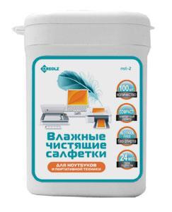 Чистящие салфетки в тубе Ritmix RC-100TPA с антибактериальным компонентом для поверхностей 100 шт